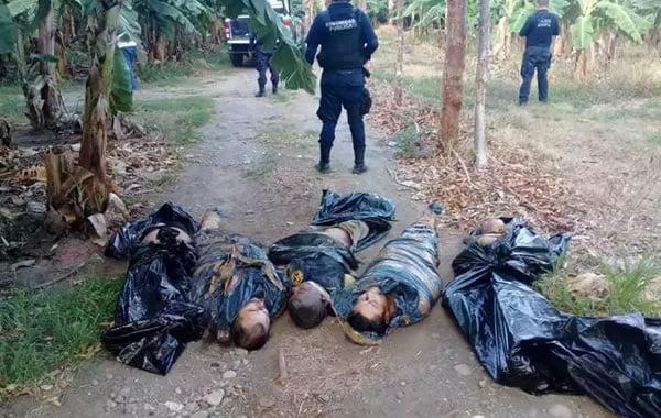 Hallan cinco cuerpos embolsados en Vega de Alatorre